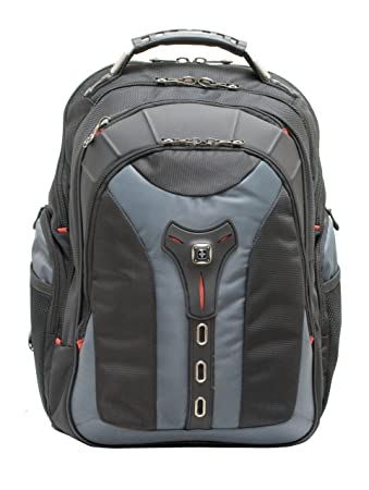 Amazon.com: PEGASUS from SwissGear by Wenger Computer Backpack ...
