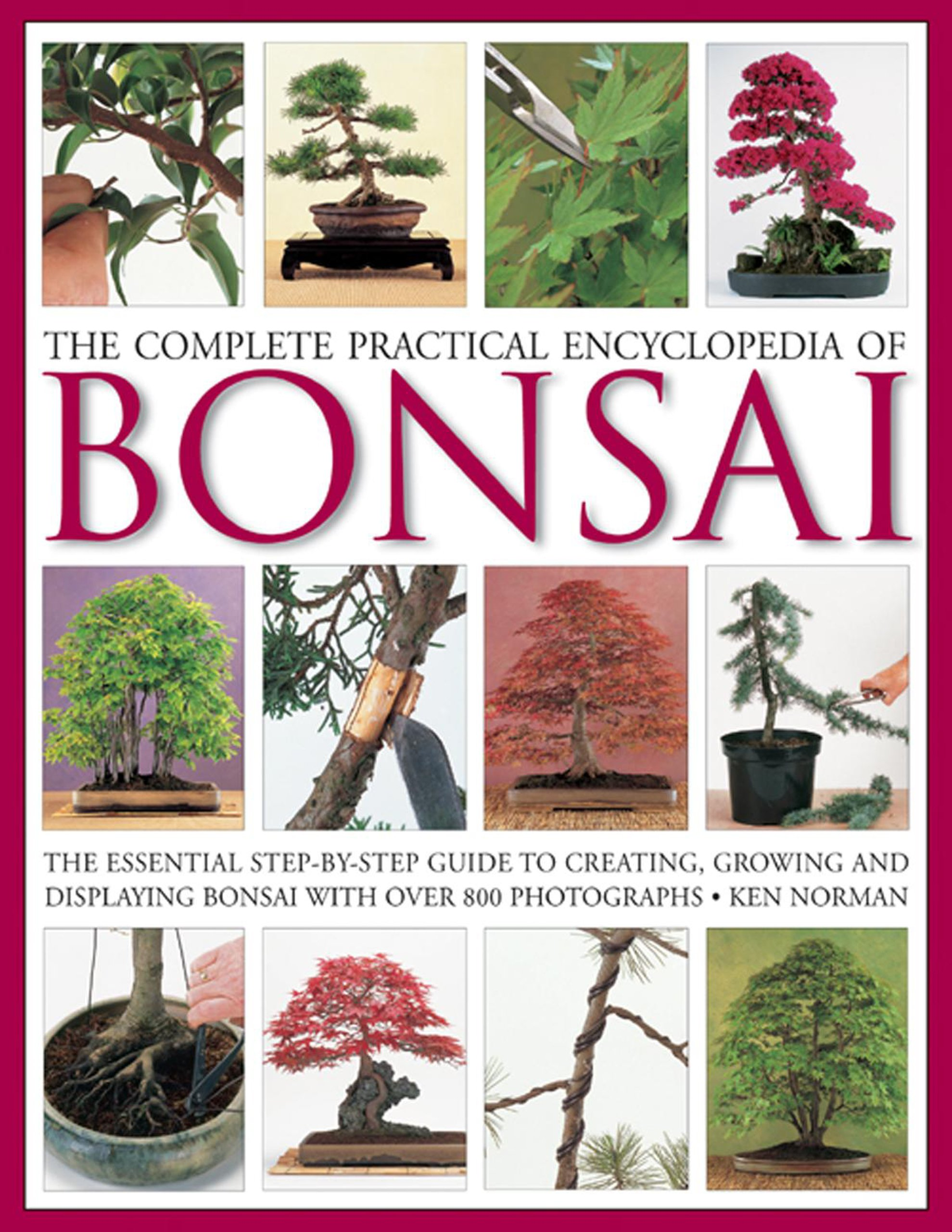 The plete Practical Encyclopedia of Bonsai Amazon Ken