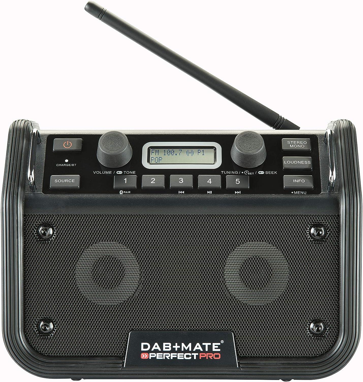 PERFECTPRO Dab+ Mate - Grabador de Radio (MP3): Amazon.es: Electrónica