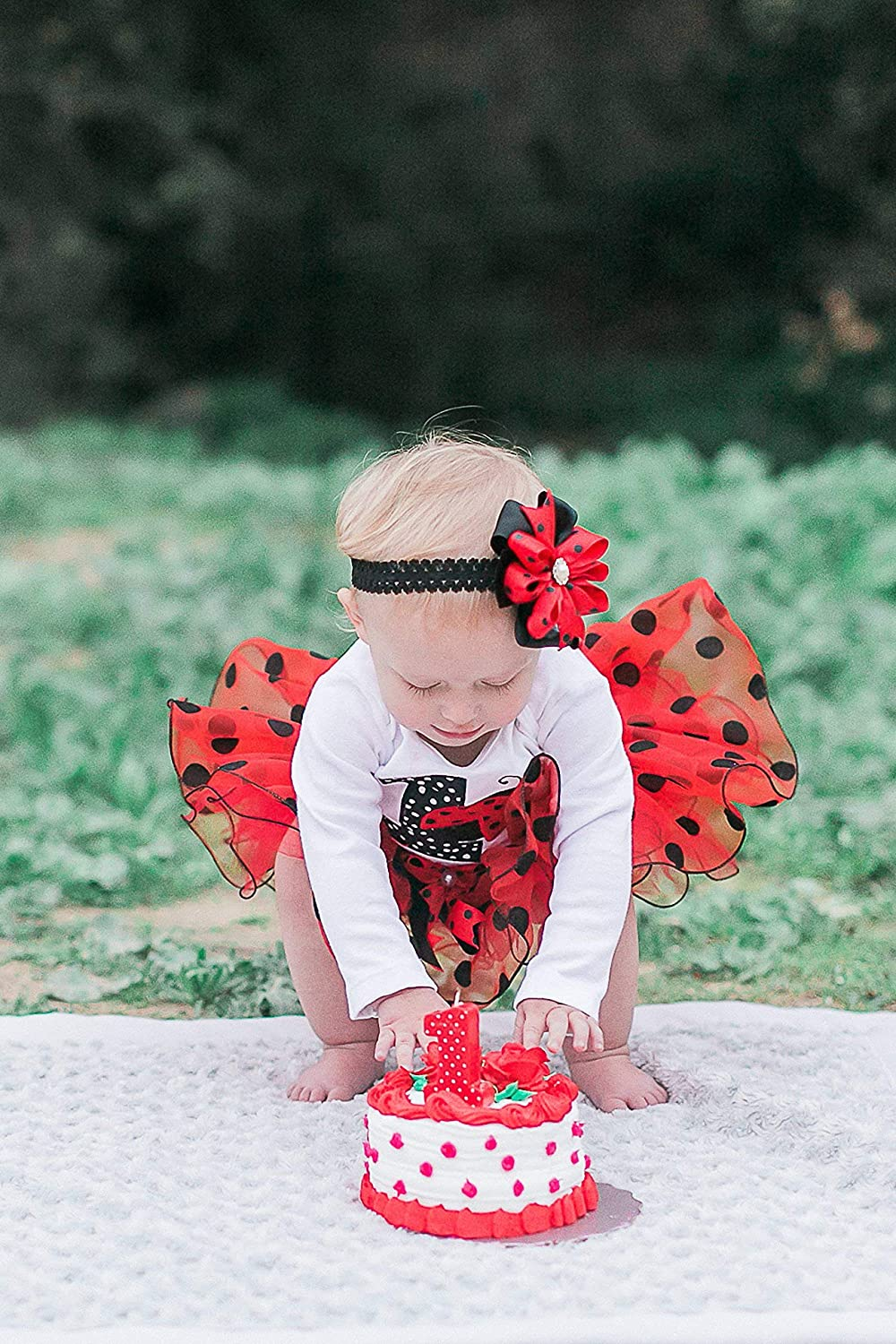Personalized Ladybug Birthday Outfit 1st Tutu First Girl Baby