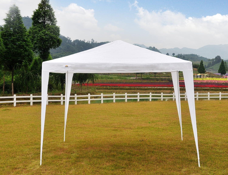 gojooasis Hochzeit Party Zelt Himmel 10 x 10 Outdoor Pavillon weiß ...
