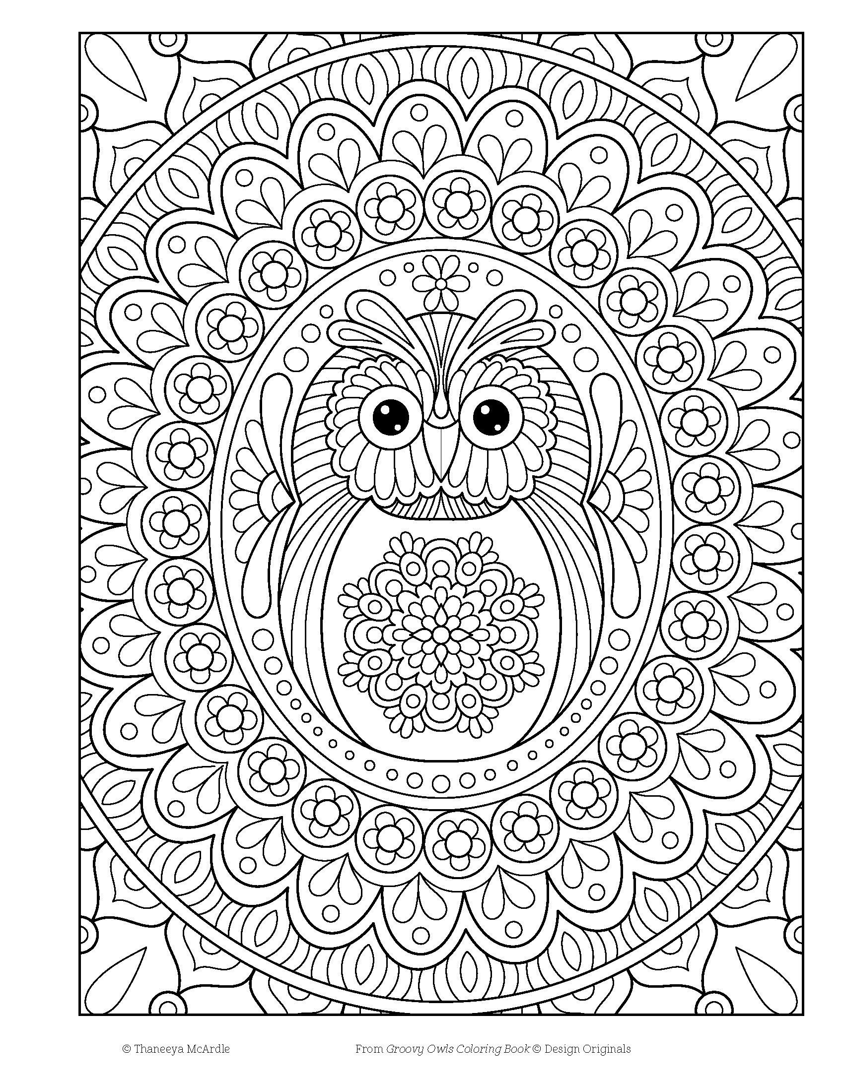 Amazon Groovy Owls Coloring Book Is Fun Design Originals 9781497202078 Thaneeya McArdle Books