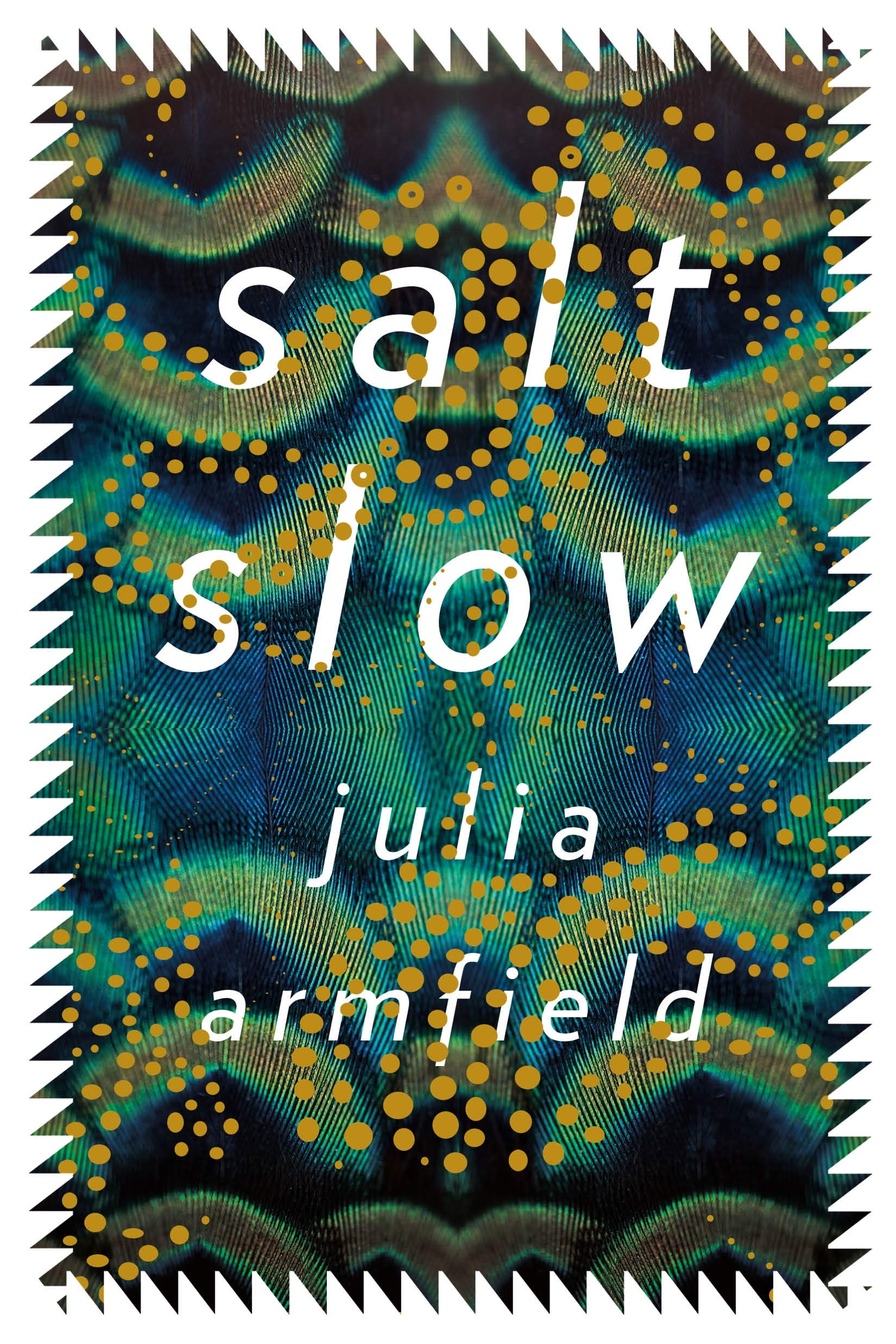Image result for salt slow julia armfield
