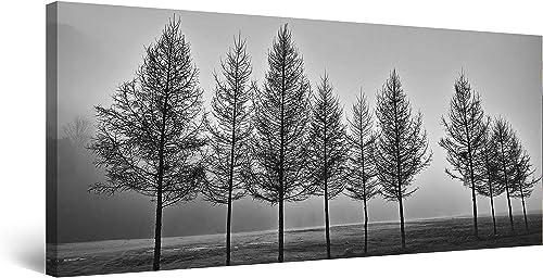 Startonight Canvas Wall Art Fog and Tree