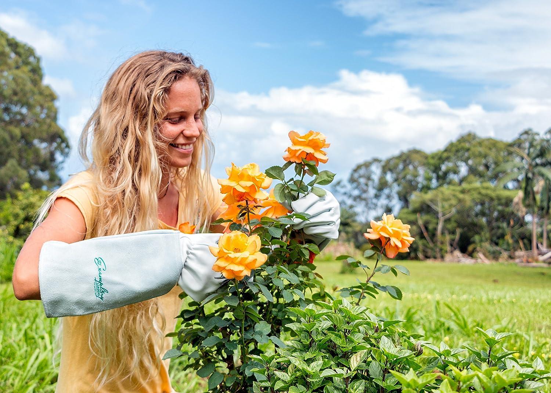 extra gro/ß, braun bis der Ellenbogen Exemplary Gardens Rosen Gartenhandschuhe f/ür Damen und Herren Ziegenleder Gartenhandschuhe haben eine Lange Rindsleder Manschette zu Sch/ützen f/ür Ihre Arme