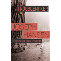 Troublemaker: Dave Brandstetter Investigation 3 (English Edition)