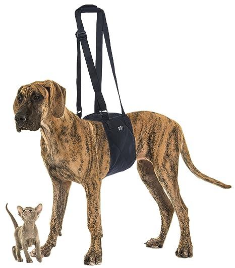 91Smsqbg1uL._SX466_ amazon com toldi dog lifting harness with adjustable strap k9