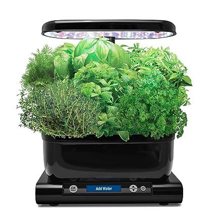 aerogarden harvest with gourmet herb seed pod kit black - Areo Garden