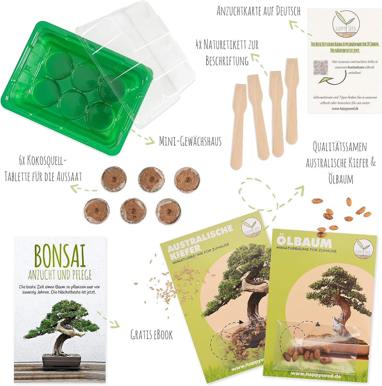 Bonsai Starter Kit Anzuchtset inkl GRATIS eBook /& Mini-Gewächshaus I HappySeed