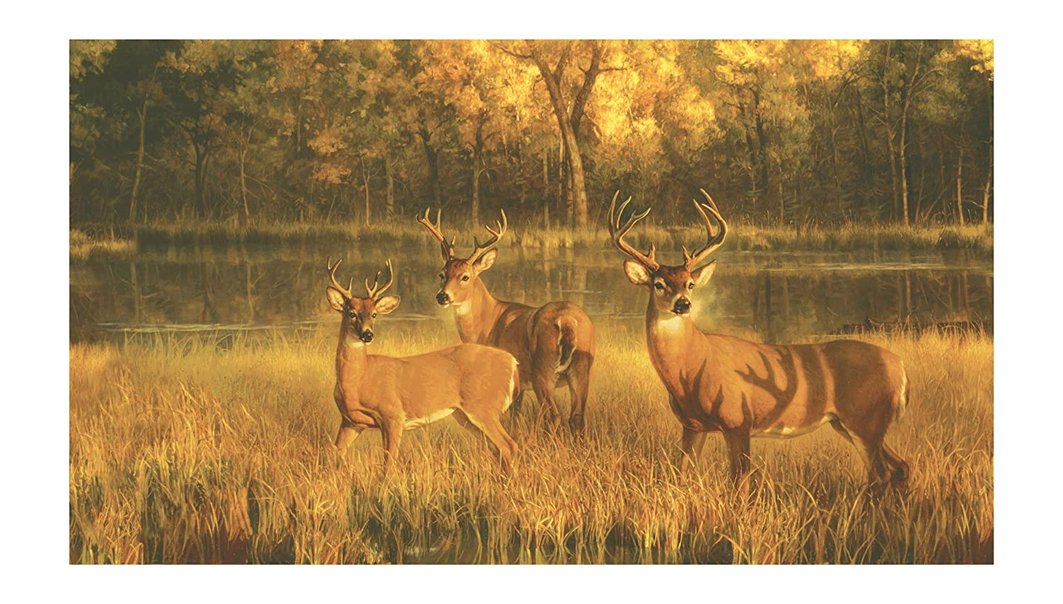 York Wallcoverings Lake Forest Lodge CH7984M White Tail Lake Mural, Browns by York Wallcoverings  B001RDXNN0