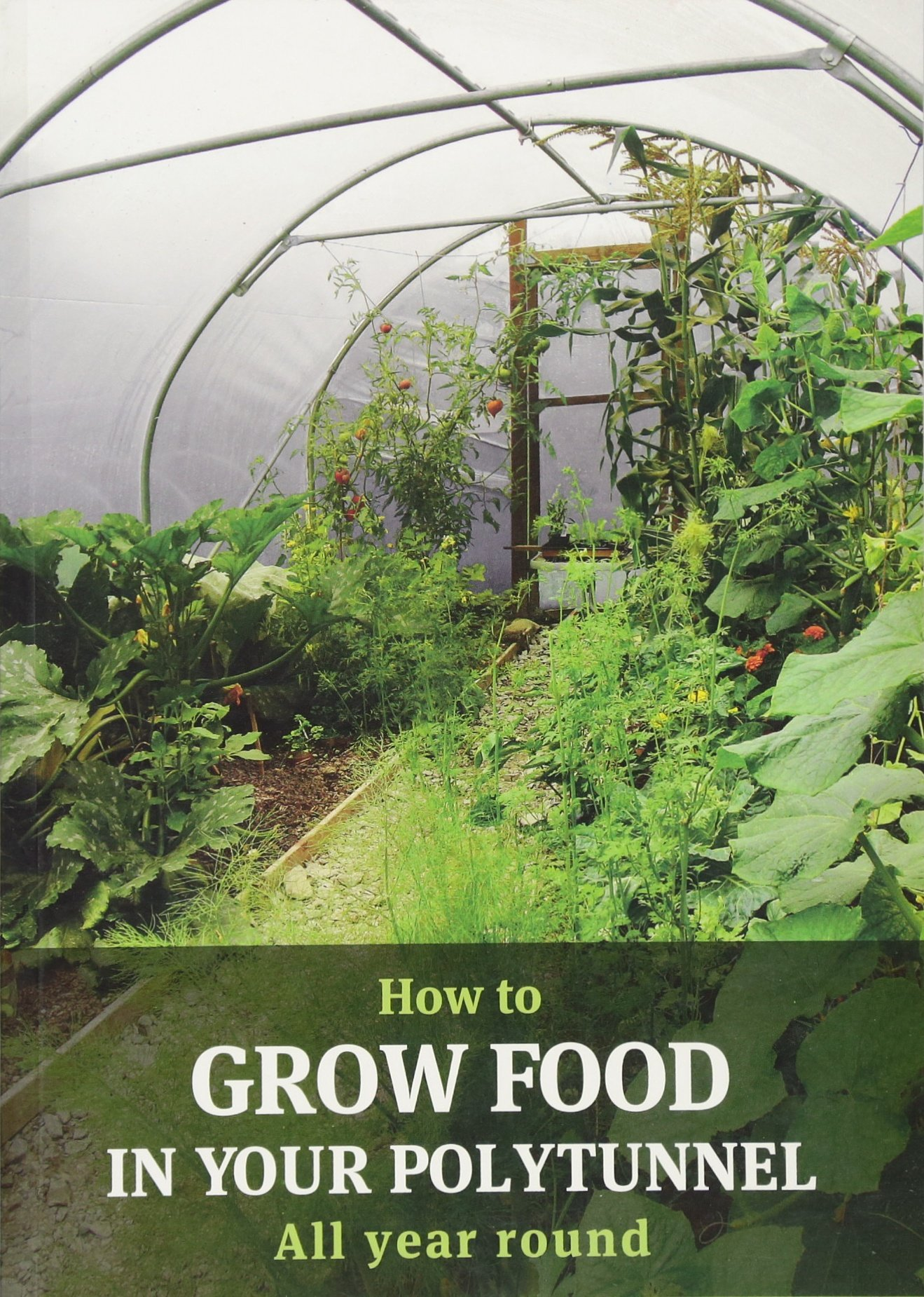 How To Grow Food In Your Polytunnel Amazon Mark Gatter Andy