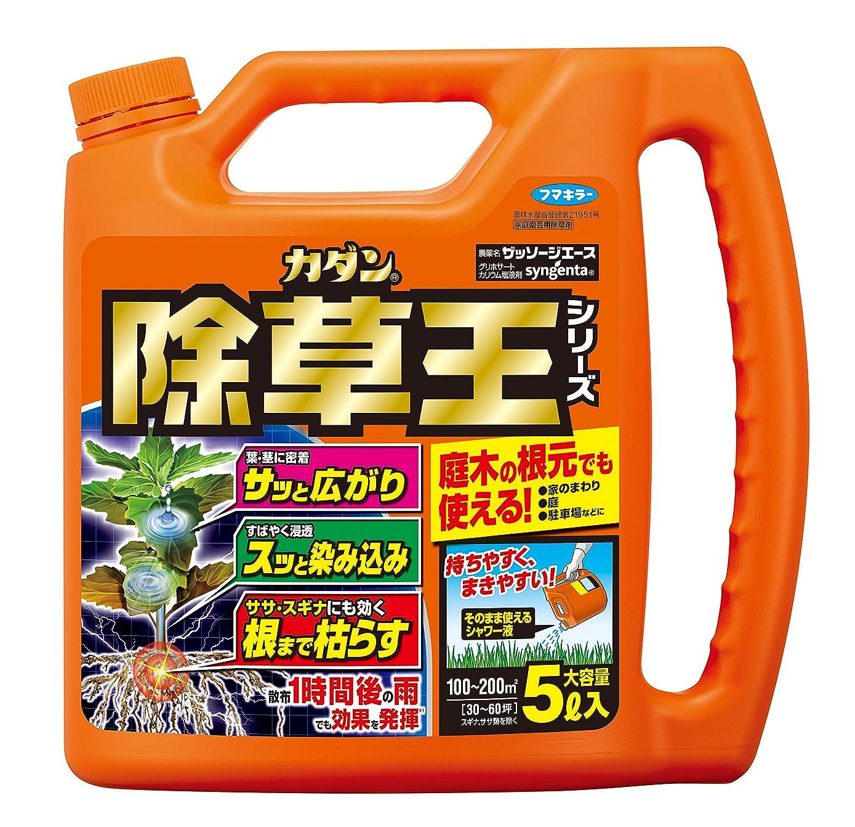 マーク襟限りなくフマキラー 除草剤 根まで枯らす虫よけ除草王プレミアム 4.8L なし