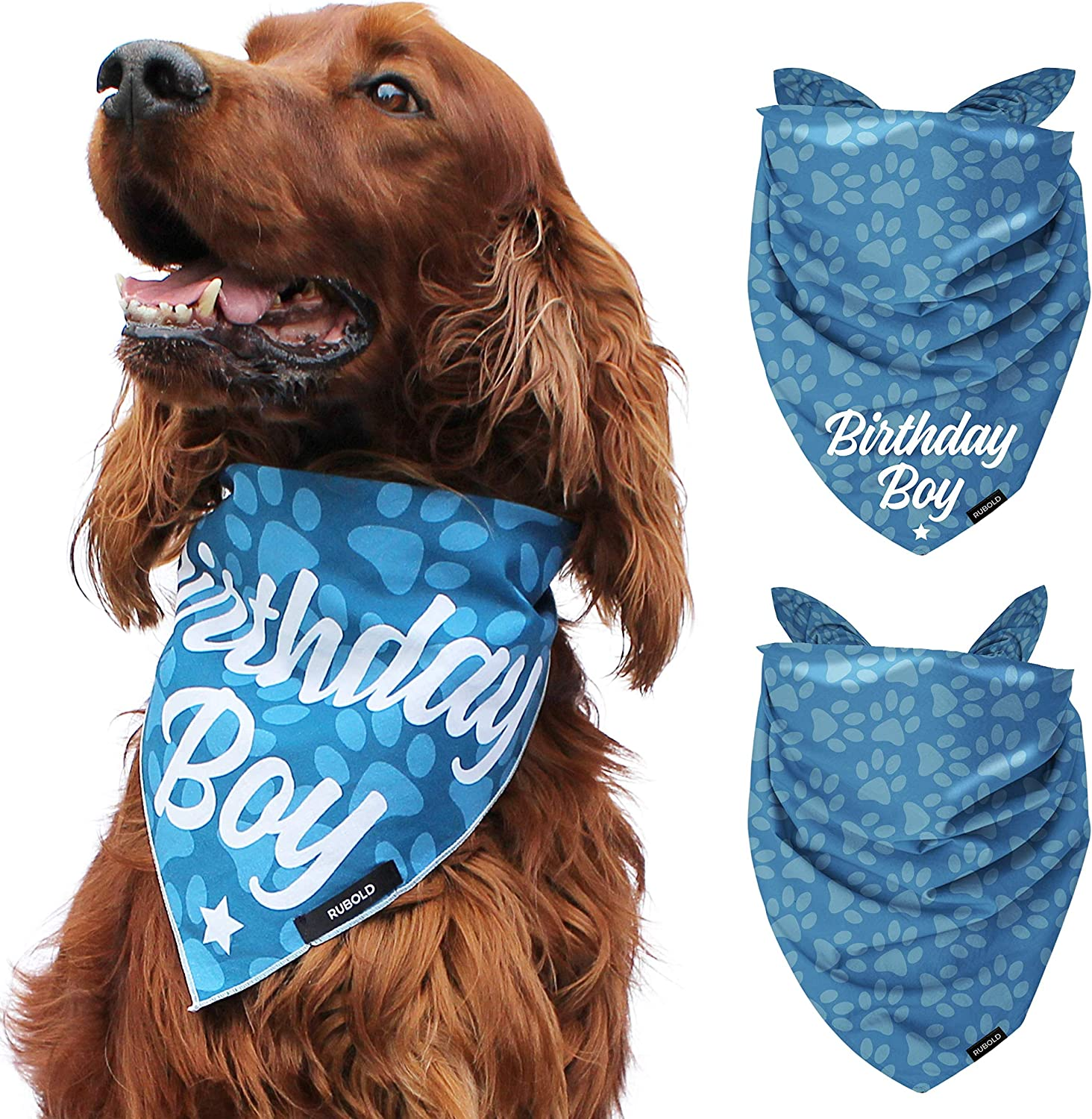 Love is in the Air Pet Bandana