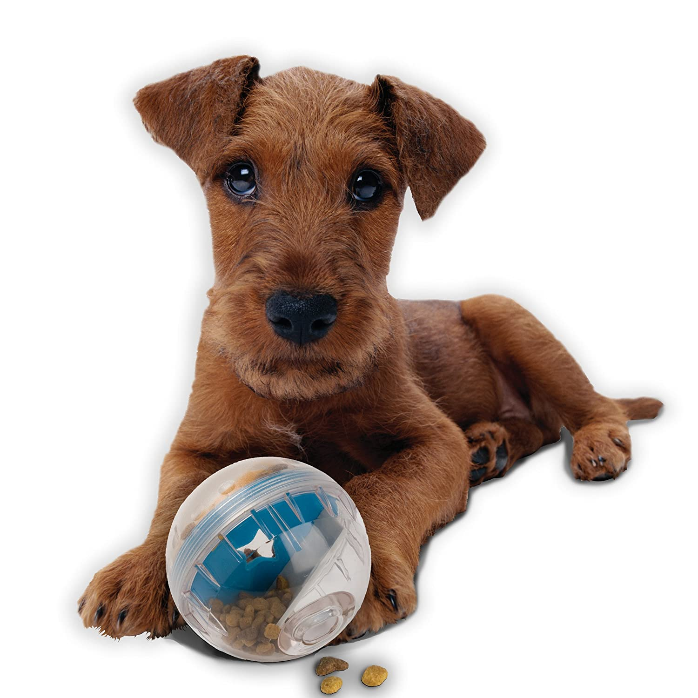 Pet Supplies Pet Zone IQ Treat Ball Interactive Treat Kibble