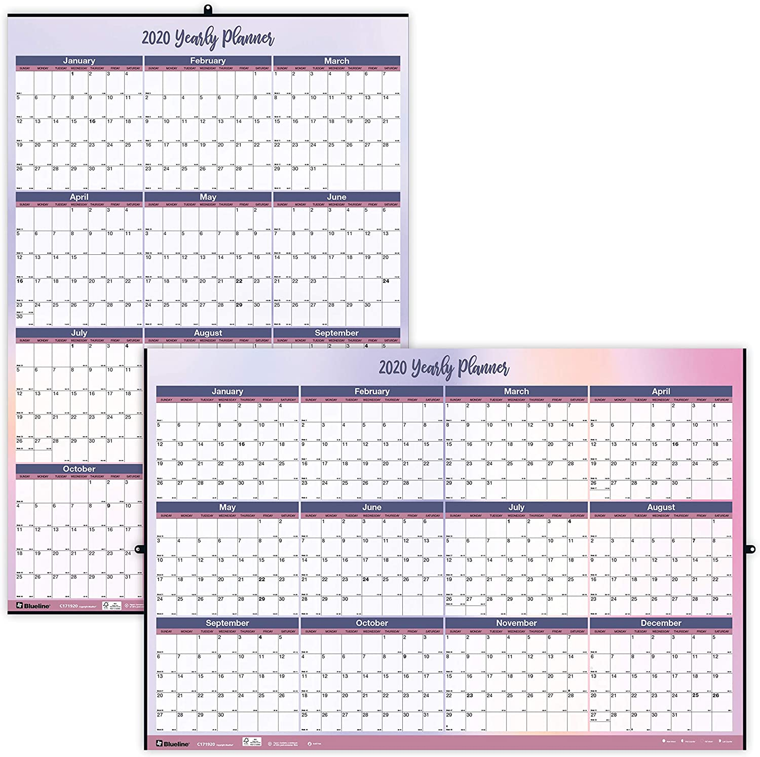 Blueline 2020 Yearly Horizontal//Vertical Wall Planner Watercolor 24 x 36 inches Laminated C171920-20