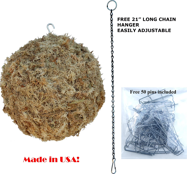 Sphagnum Moss Living Kokedama Ball, Sphere, Hanging Form – 8 Diameter – Made in USA