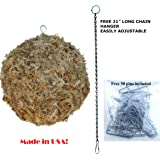 """Sphagnum Moss Kokedama Ball Hanging - 6"""" Sphere Orb All Natural Made in USA!"""