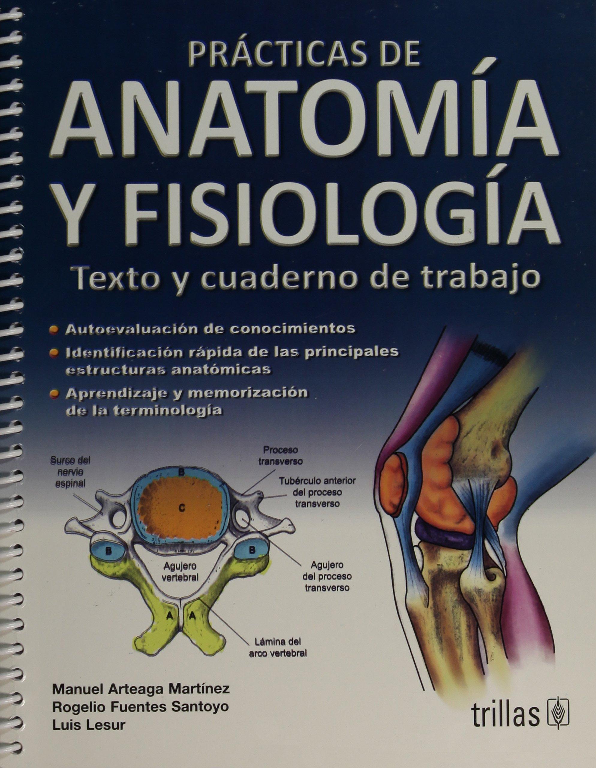 Perfecto Agujeros De Anatomía Y Fisiología Pruebas De La Práctica ...