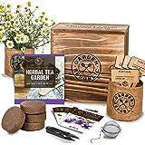 Indoor Herb Garden Seed Starter Kit - Herbal Tea Growing Kits, Grow Medicinal Herbs Indoors, Lavender, Chamomile, Lemon Balm,