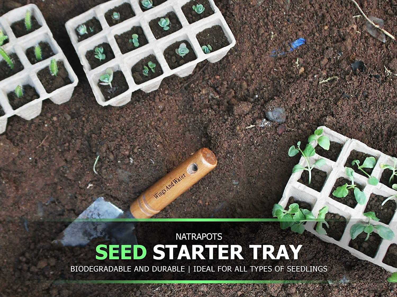 100/% Natural and Biodegradable Planting Pots for Organic Plant Growth 5 12-Cell Seedling Started Trays 60 Total Peat Pots Seed Starter Tray with 12 Reusable Plastic Markers