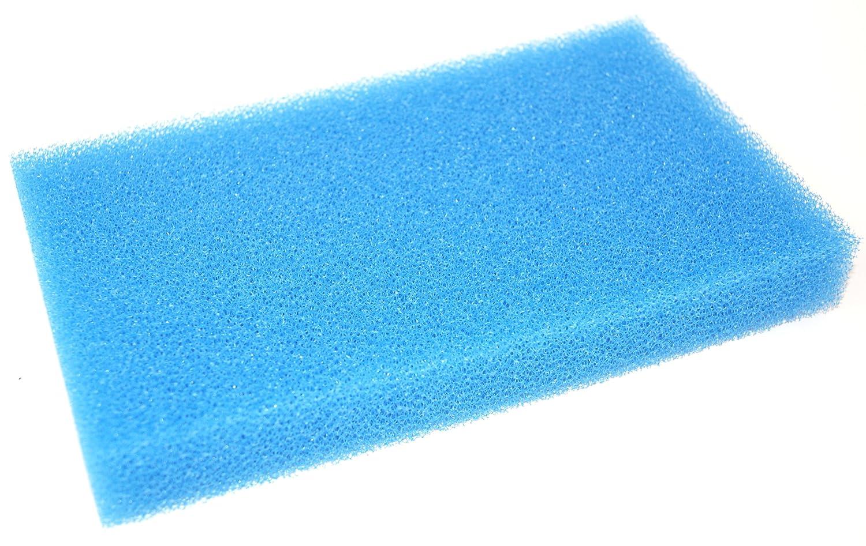 Festool NF-CT MINI/MIDI Wet Filter - Blue 456805