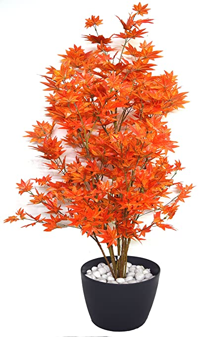 Relatively Buy Fourwalls Decorative Polyester Artificial Japanese Maple Plant  YK38