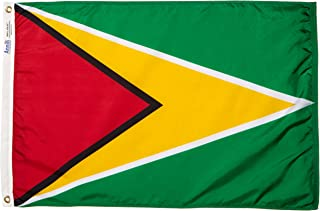 product image for Annin Flagmakers Model 193302 Guyana Flag Nylon SolarGuard NYL-Glo, 2x3 ft, 100% Made in USA to Official United Nations Design Specifications