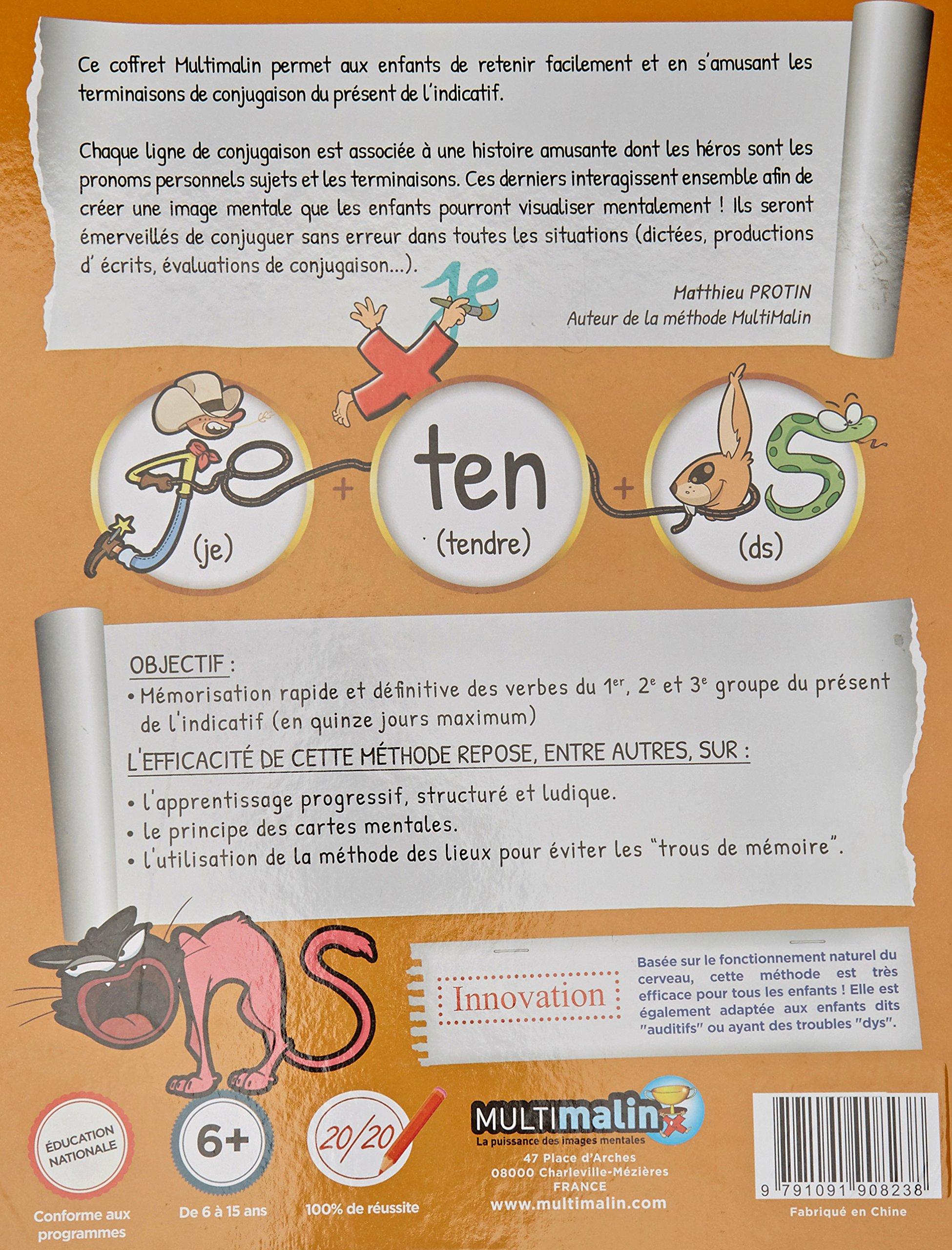 Conjugaison du présent de lindicatif : Le cahier dapprentissage, avec le jeu de 56 cartes 1DVD: Amazon.es: Nicolas Meneteau, Charlotte Gahmia, ...