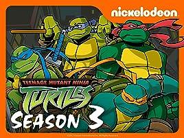 Amazon.com: Teenage Mutant Ninja Turtles (2003) - Season 3