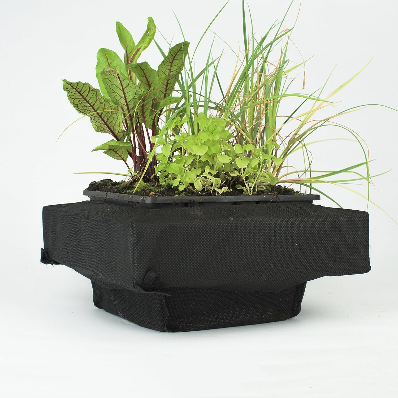 gut geeignet f/ür Teichplfanzen wie Seerosen Teichpflanzen Korb 1 Premium Set XXL PFLANZKORB SET PFLANZHILFE Wasserpflanzen verschiedene Gr/ö/ßen ideal f/ür Gartenteich Wasserpflanzen Teich