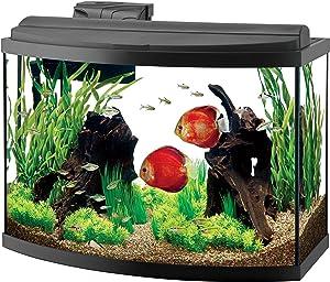 Aqueon 36 gallon deluxe bow front aquarium kit
