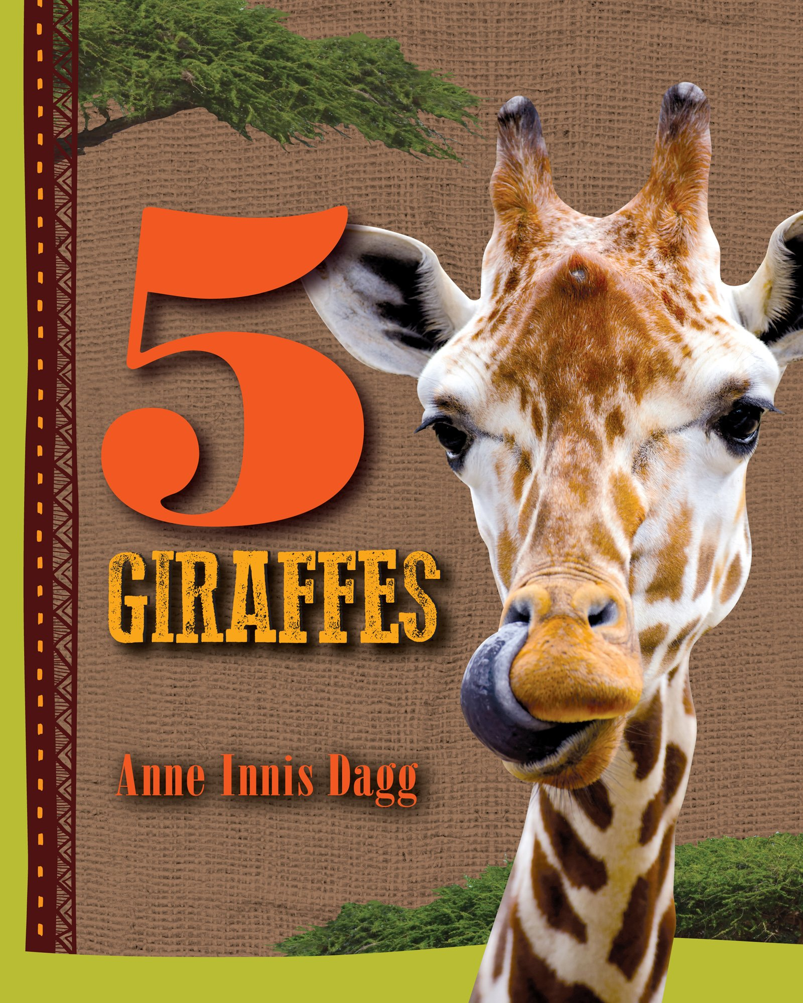 5 Giraffes (5 Animals)