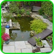 DIY Pond Building