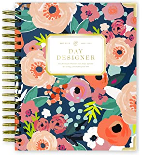 Amazon.com : Miraculous Ladybug Diary /Planner (2016 Limited ...