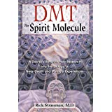 DMT: The Spirit Molecule: A Doctor's Revolutionary Research into the Biology of Near-Death and Mystical Experiences