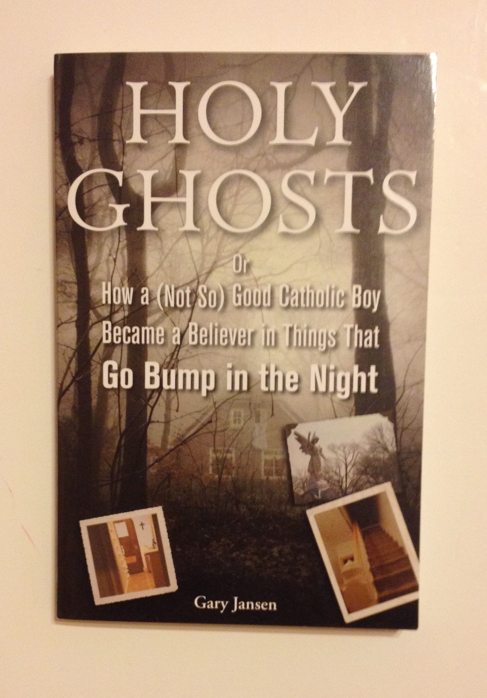 Holy Ghosts or How a (Not So) Good Catholic Boy Became a Believer in Things That Go Bump in the Night: 9781611294224: Amazon.com: Books