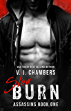 Slow Burn (Assassins Book 1)