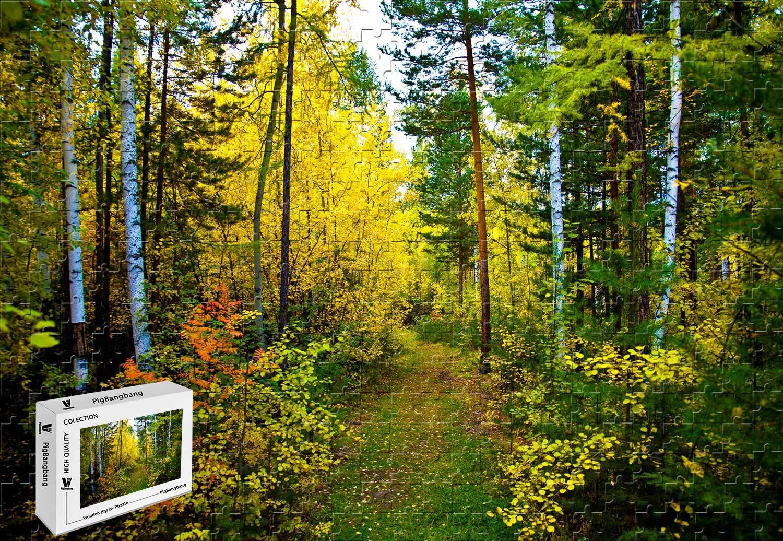 大きな割引 PigBangbang,20.6 X X 15.1インチ、木製 - 美しい自然の森の木 PigBangbang,20.6 - - 300ピースジグソーパズル B07GM7WP6M, 南条町:28b16e5f --- a0267596.xsph.ru