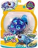 Little Live Pets - Kk280411 - Tortue Surfy La Surfeuse