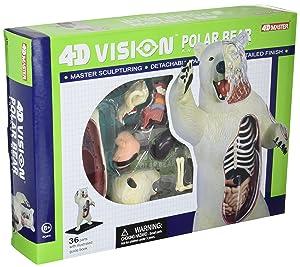 4D Master 4D Vision Polar Bear Anatomy Model Science Kit, One Color, 26097