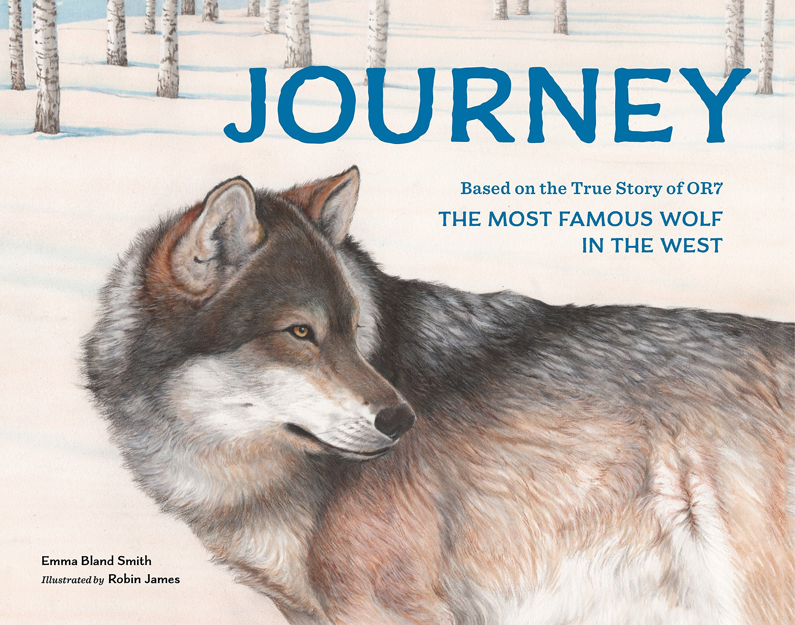 Life with wolves: How scientists and writers settled next to wolves, and what people gave these experiments