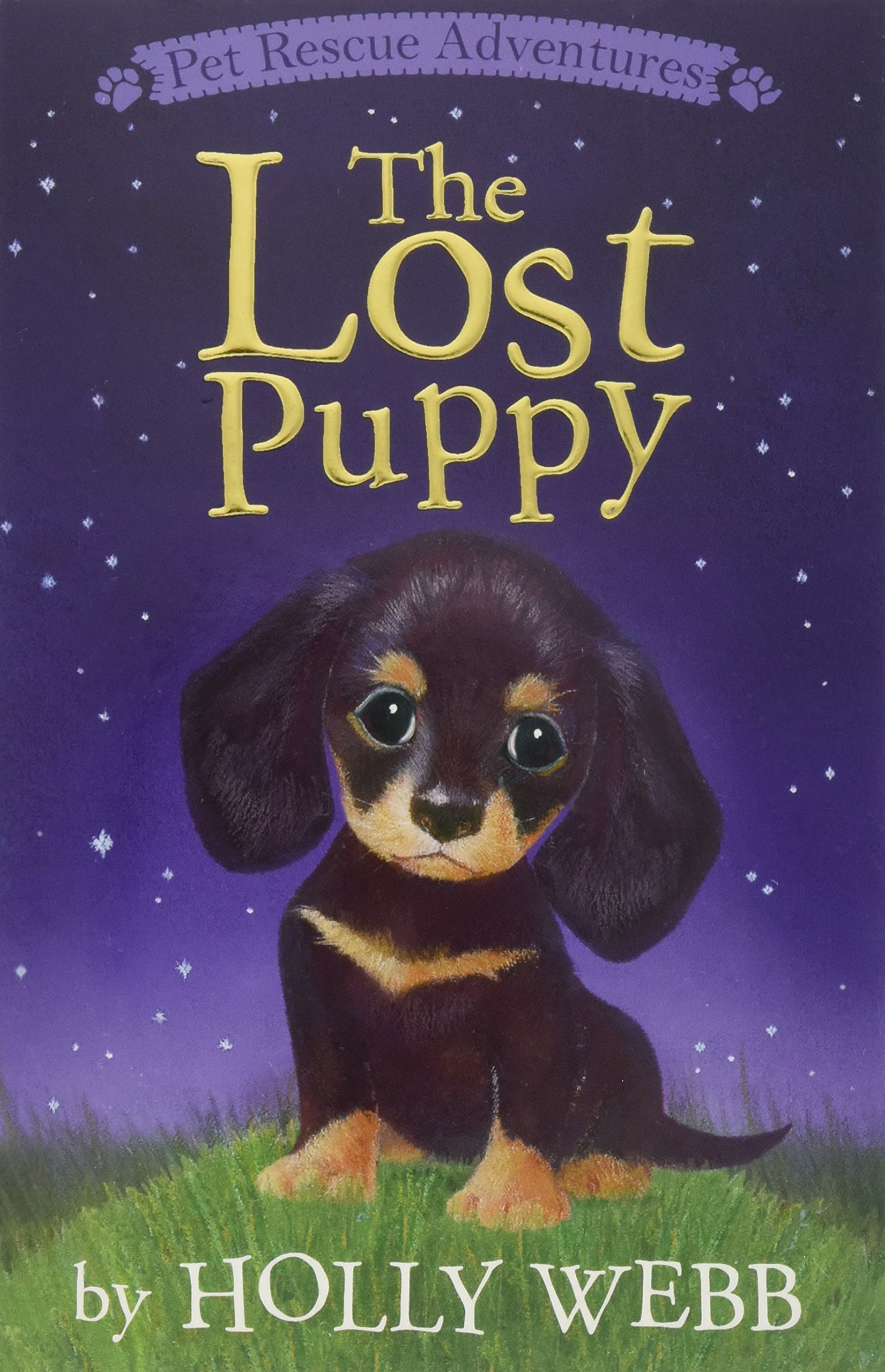 Download The Lost Puppy (Pet Rescue Adventures) PDF