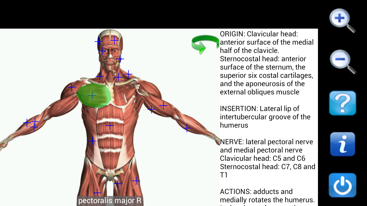 Amazon.com: Visual Anatomy Free: Appstore for Android
