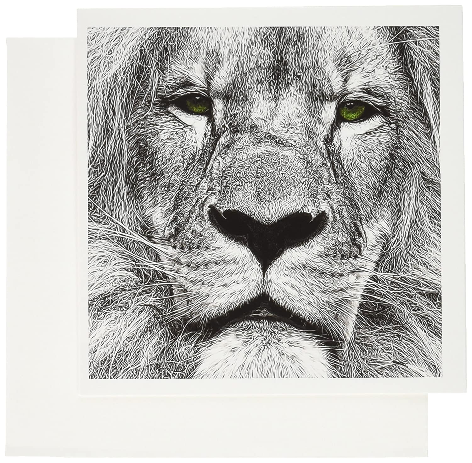 Amazon com 3drose african lion digital pencil drawing with green eyes greeting cards 6 x 6 inches set of 12 gc 164743 2 office products