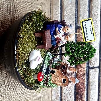 Kişiye özel Birlikte Yaşlanalım Minyatür Bahçe M 8 Amazoncomtr