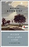 Bilder deiner großen Liebe: Ein unvollendeter Roman (German Edition)