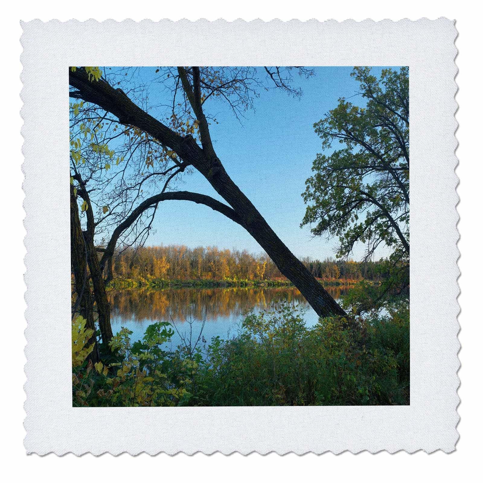 3dRose Danita Delimont - Lakes - Marshs Lake, Spruce Woods Provincial Park, Manitoba - 20x20 inch quilt square (qs_257516_8)