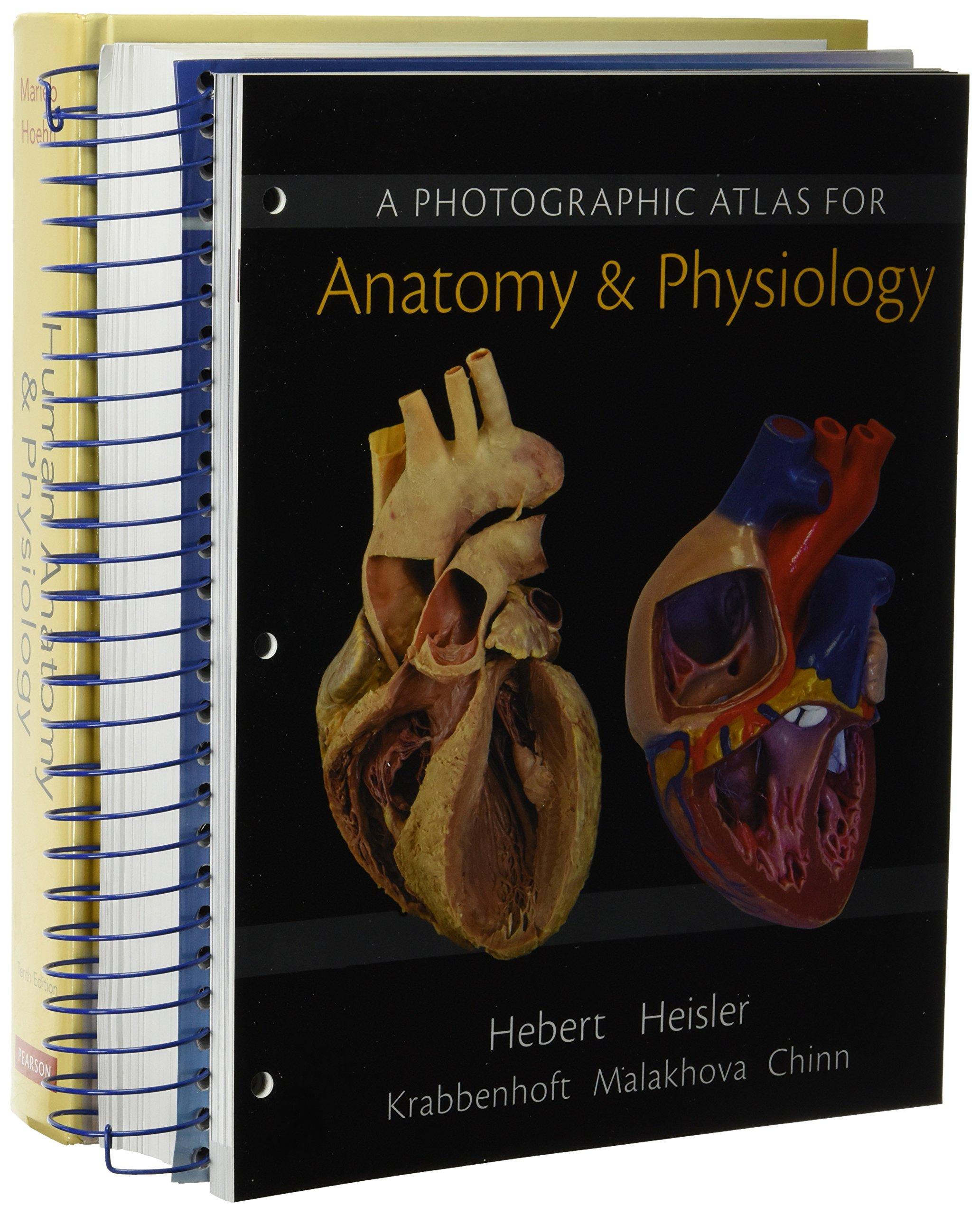 Buy Human Anatomy & Physiology + Laboratory Manual, Cat Version + ...