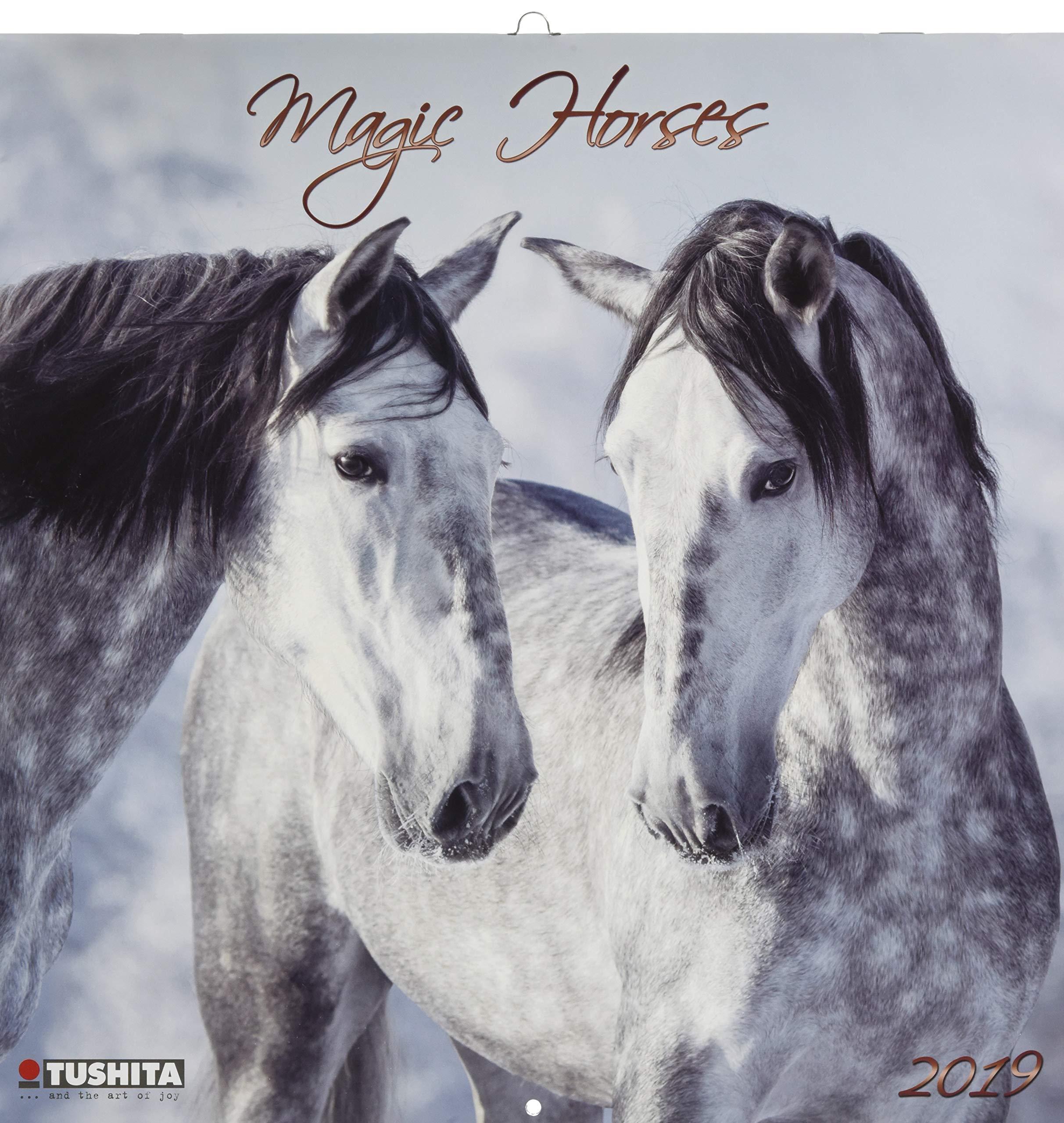 Magic Horses 2019 (WONDERFUL WORLD) pdf epub