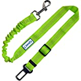 Zenify Dog Seat Belt Car Extendable Lead - Bungee Leash for Dogs Puppies - Pet Adjustable Elastic Seatbelt Harness Vehicle Safety Birthday Road Trip Gift Idea (Green)